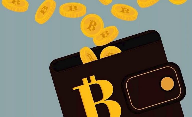 Сколько можно заработать на Bonus Bitcoin