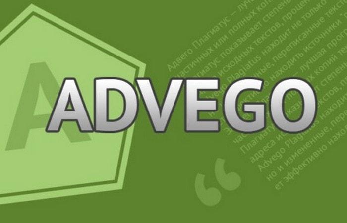 Сколько можно заработать денег в Advego