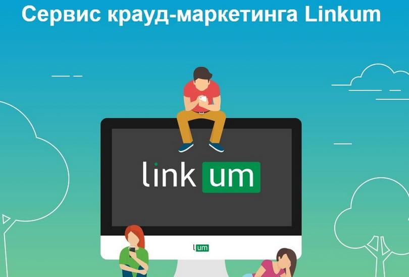 Обзор сервиса Linkum